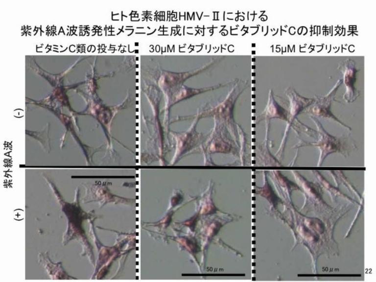 ビタブリッドCのメラニン抑制効果1